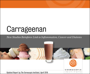 Carageenan_report_cover