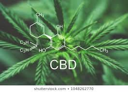 cbd_diagram